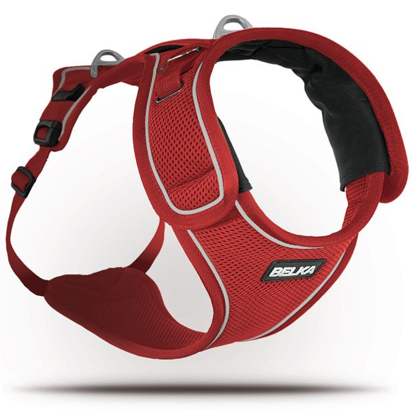 Curli - Harness Dogs Medium and Large Size Belka