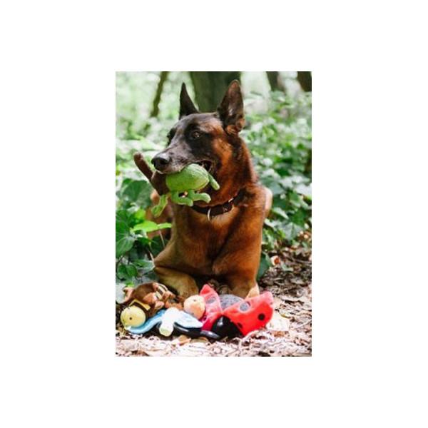 MYDOQS-Raccoglitore Documenti Pet - Colored Paws