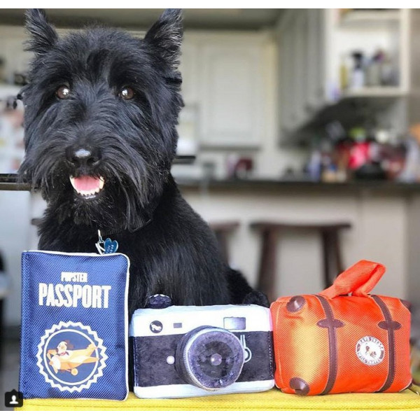 Dog Diggin - Gioco per Cani - Bottiglia Mutt & Chandog
