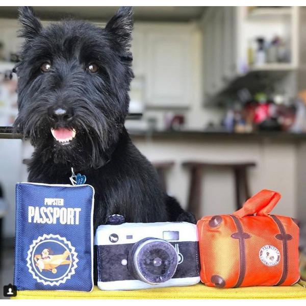 Dog Diggin - Toy for Dogs - Mutt & Chandog Bottle