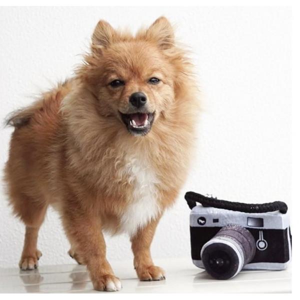 Dog Diggin - Gioco per Cani -Hairmes Ball Petite