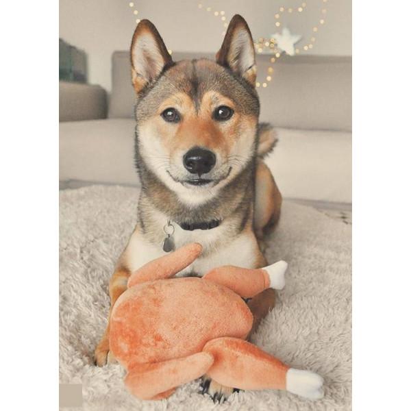 Dog Diggin - Gioco per Cani - Borsa Hairmes