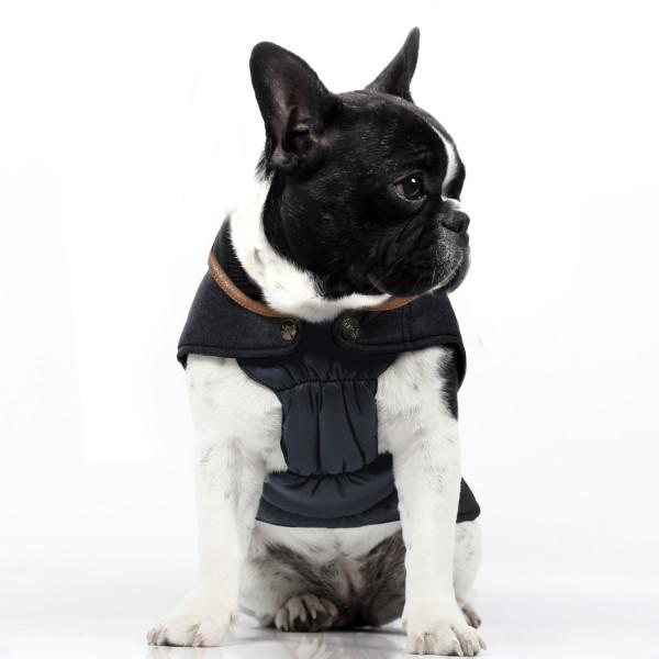 Milk & Pepper Bulldog- Commodore - Coat