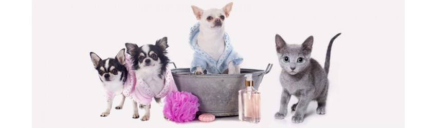 Igiene e Bellezza